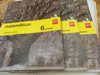 Libros de Matemáticas 6º Primaria