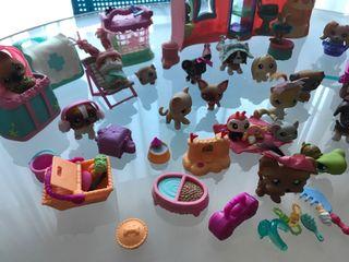 Little pet shop