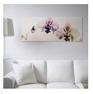 """orquídeas espectro 55x 22"""""""