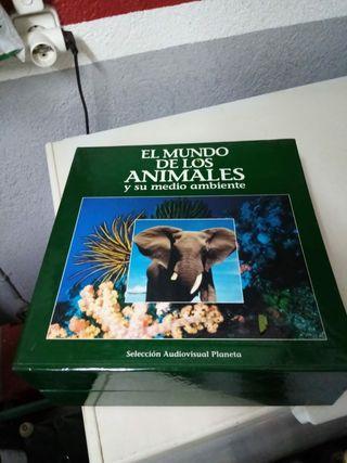 """colección Láser Disc """"el Mundo de los Animales"""""""