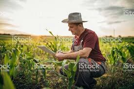 ouvrier agricole / obrero agrícola