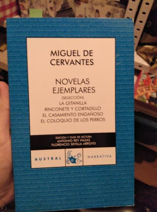 Novelas ejemplares, Miguel de Cervantes