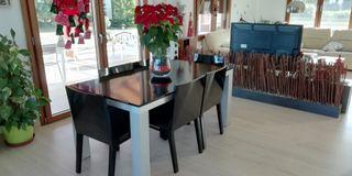 Conjunto de mesa de comedor + 6 sillas tapizadas