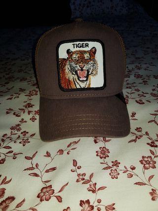 Gorras Goorin Bros Tiger.