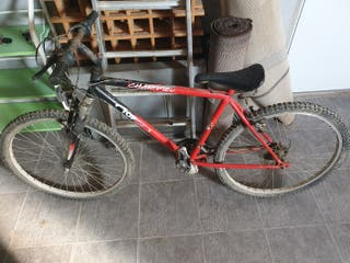 Bici de montaña Top Bike Champion