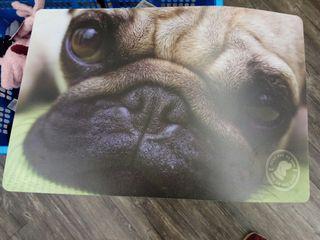 Lámina para comederos perro. Dibujo carlino / pug