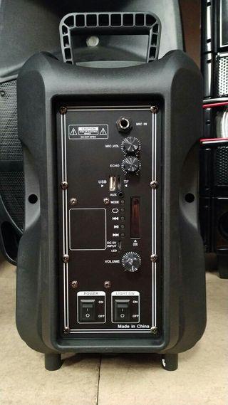 "Altavoz Portatil 8""/ Bluetooth USB/ Karaoke/ Led's"