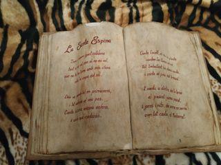 libro de yeso la santa espina