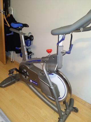 Bicicleta estática Nueva Biking v5930