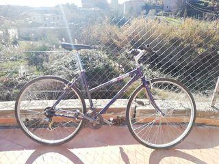Bicicleta de paseo por carretera o ciudad muy cuid
