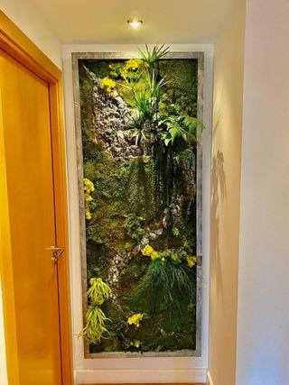 jardín vertical plantas tratadas naturales.