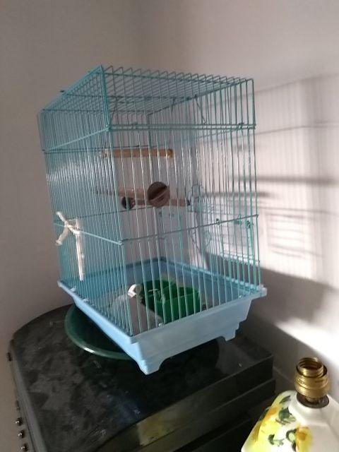 jaula pajaro o canario