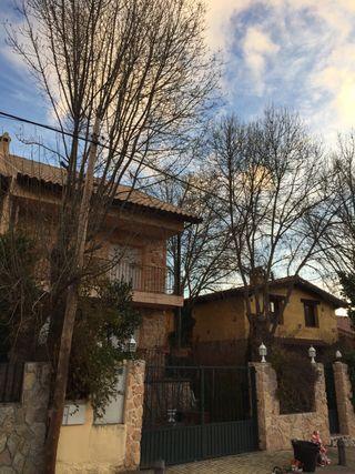 Jardineria, zona segovia y norte de Madrid