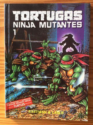 Comic TORTUGAS NINJA MUTANTES Nº 1
