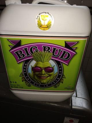BIG BUD / 2 litros para Cultivos