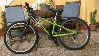 bici 14'