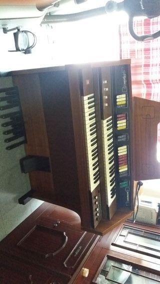 Organo electronico Howard Skyline