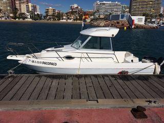 Barco Felco Delfin 595