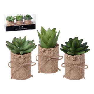 Pack 3 plantas decorativas verdes NUEVAS