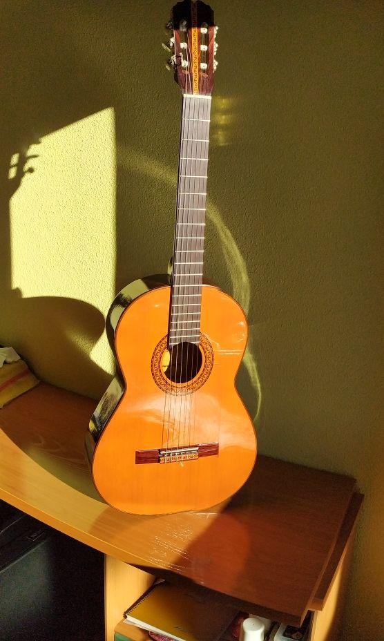 Guitarra palosanto, Admira, Elvira