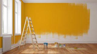pintor interiores exteriores