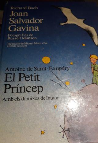 El Petit Príncep i Joan Salvador Gavina (ci)