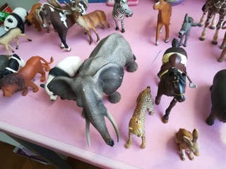 lote animales