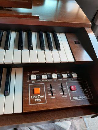 órgano electronico