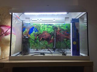 Vendo acuario ,por mudanza
