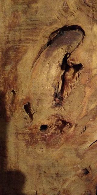 Cabezal de madera de olmo