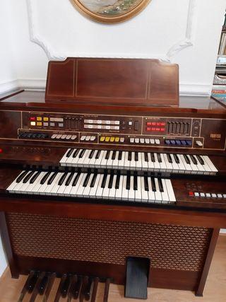 Organo Electronico