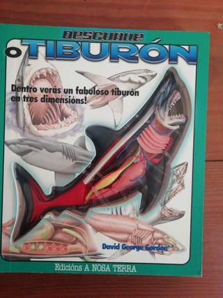 O Tiburón