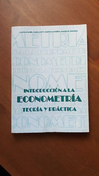 Introducción a la econometría: teoría y práctica