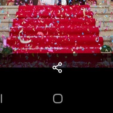 Alfombra Roja para celebración ( boda)