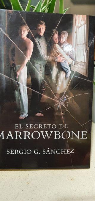 El secreto de Marrowbone,libro.