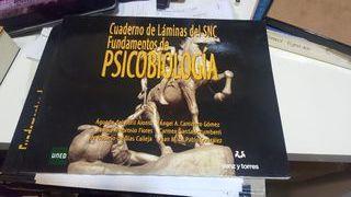 libro de fundamentos de psicobiologia de Águeda de