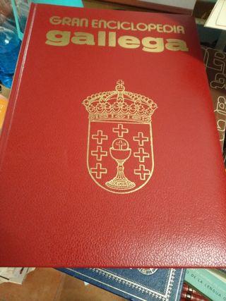 Gran enciclopedia gallega (32 tomos)