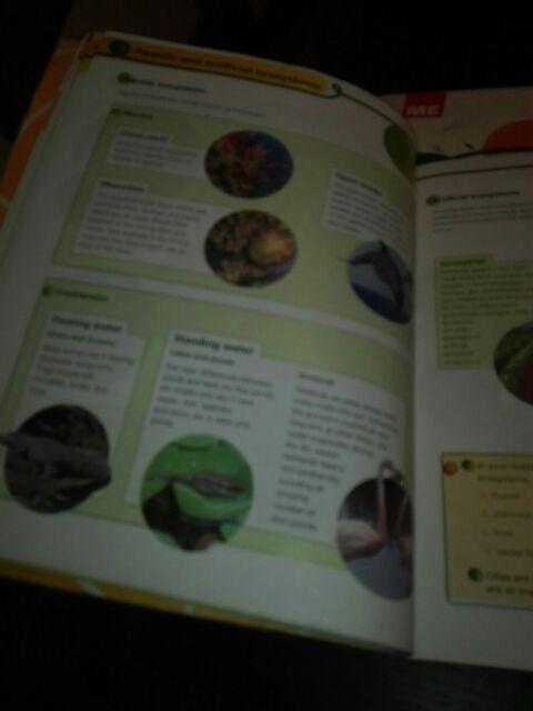 Natural Science primary 5. ed macmillan