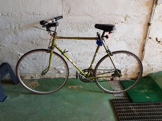 Bici Emporium Bentley