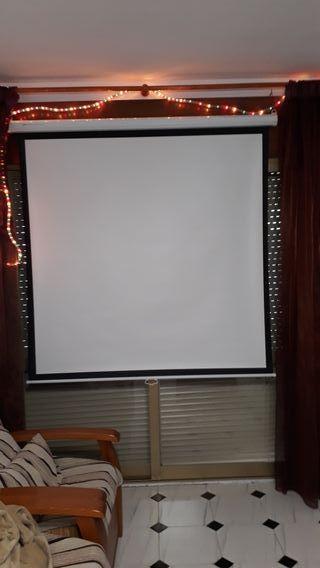 pantalla para proyector phoenix