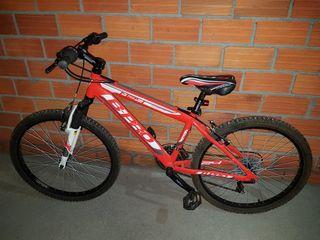 Dos bicicletas de 20 y 24