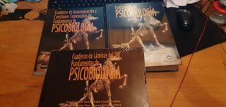 Libro fundamentos de psicobiologia UNED