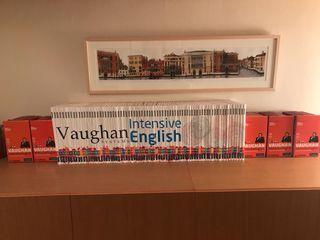 Curso Inglés Multiplataforma Vaughan