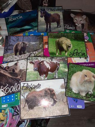 Fichas animales y tablas de multiplicar SÓLO HOYY