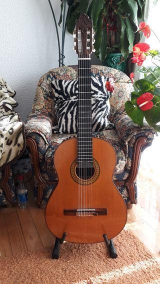 Guitarra De Concierto José Ruiz Pedregosa
