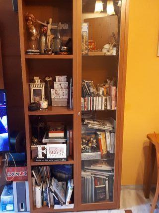 Vitrina con librería madera y cristal