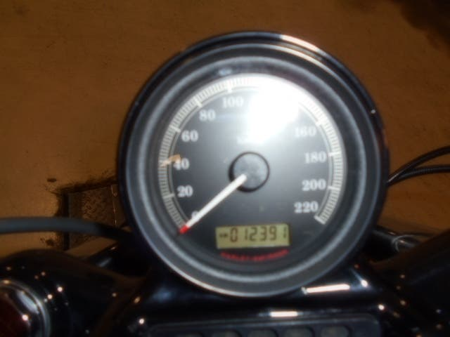 Harley Sportster 1200 Forty-Eight
