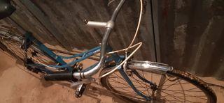 bicicleta orbea laida