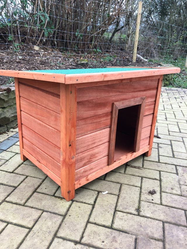 Dog wooden house
