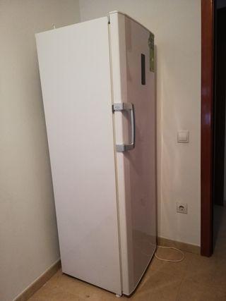 Congelador vertical Beko
